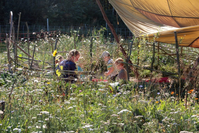 Matschpiraten|Sommer|Blumenmeer