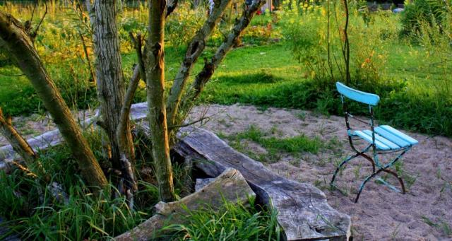 Weidenspinne Sommer Zauberwaldgarten Seitenheader