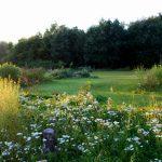 Zauberwaldgarten|Sommer|Impressionen