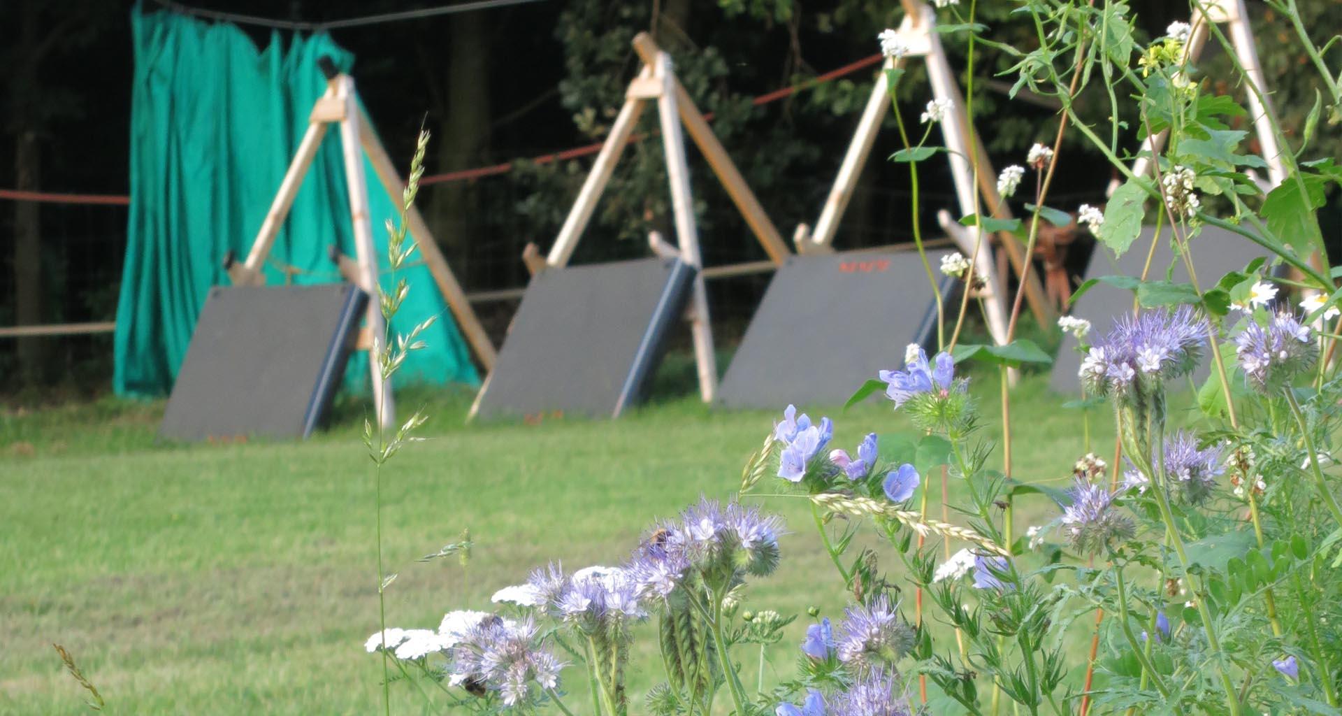 Bogenschießen|Sommer|Seitenheader