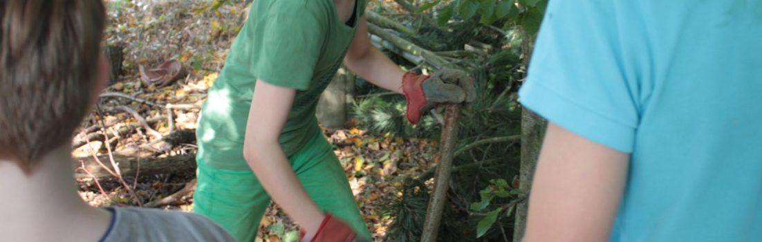 Waldscouts|Bushcraft|Holzbearbeitung