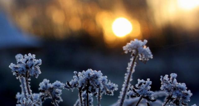 Impressionen|Zauberwaldgarten|Winter