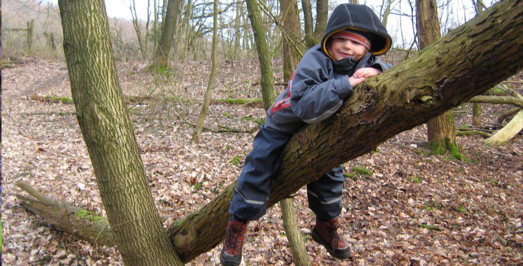 Winter|Kind auf Baum|Kita