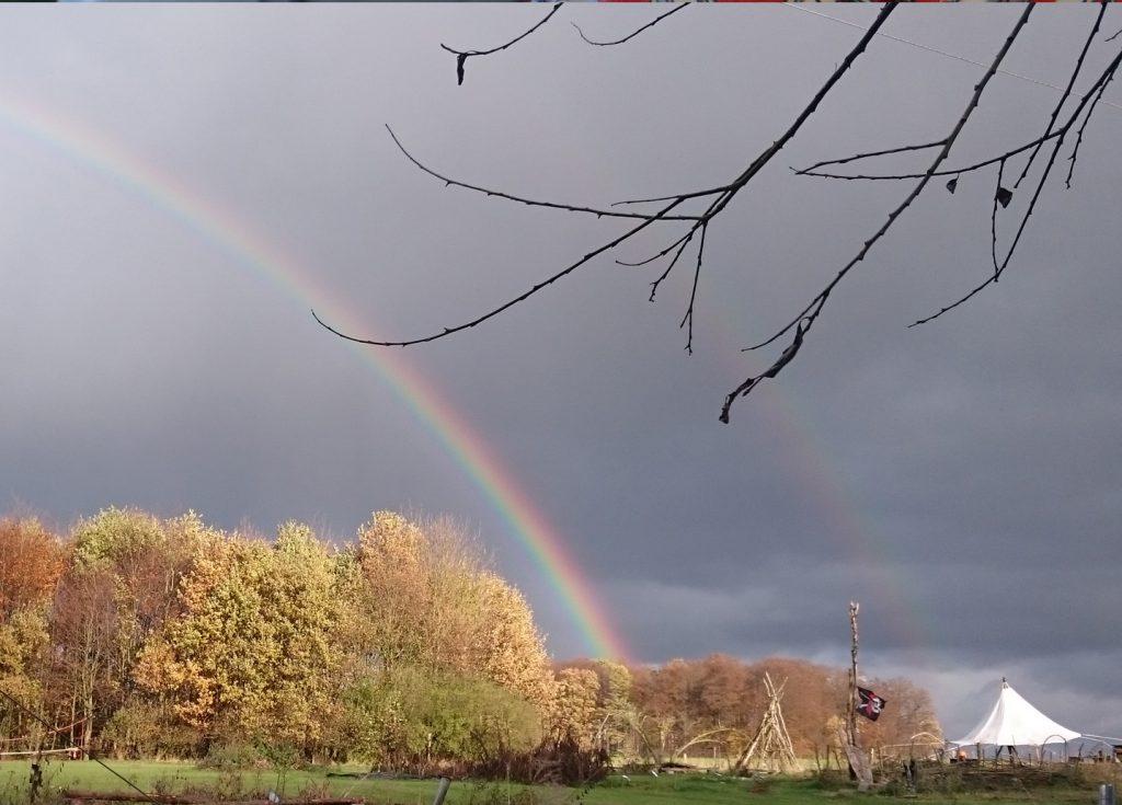 Regenbogen,Zauberwaldgarten,Seitenheader