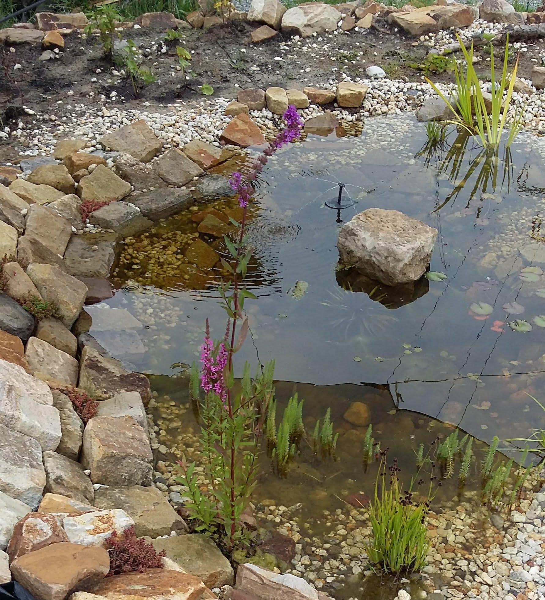 Zauberwaldgarten,Teichanlage