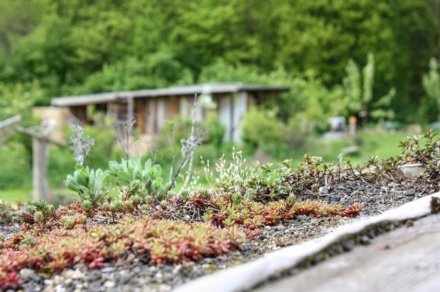 Zauberwaldgarten Impressionen